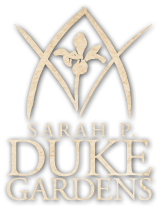 Duke Gardens logo