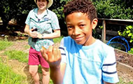 little boy holding a butterfly on his finger