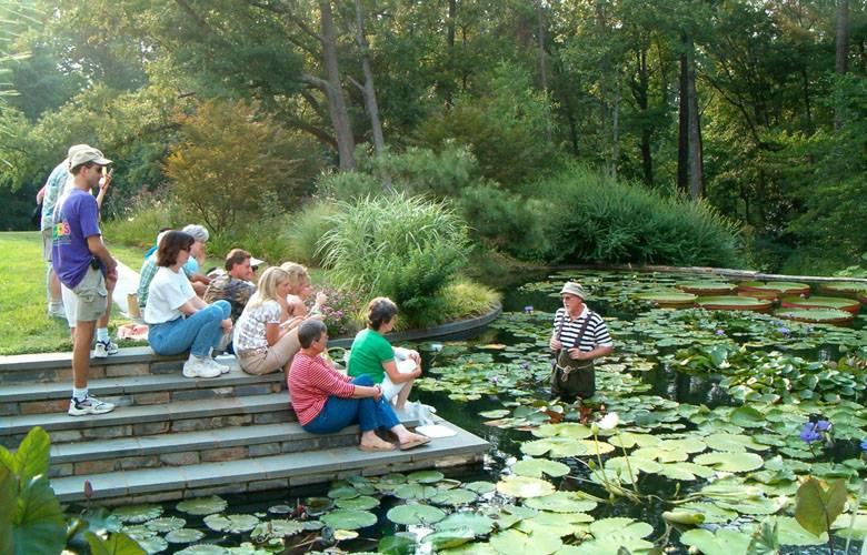About Duke Gardens | Duke Gardens