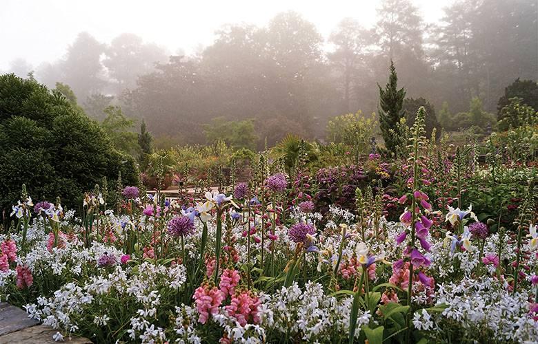 Blomquist garden duke gardens - Duke Gardens The Crown Jewel Of Duke University