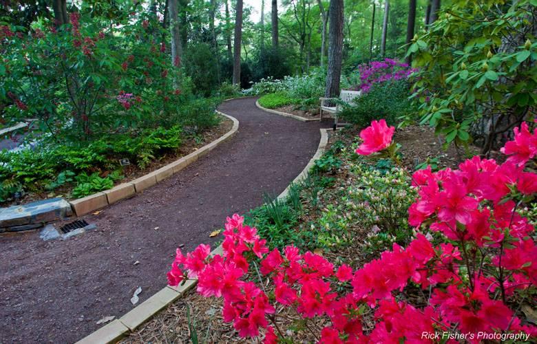 Duke Gardens   Duke University Part 13