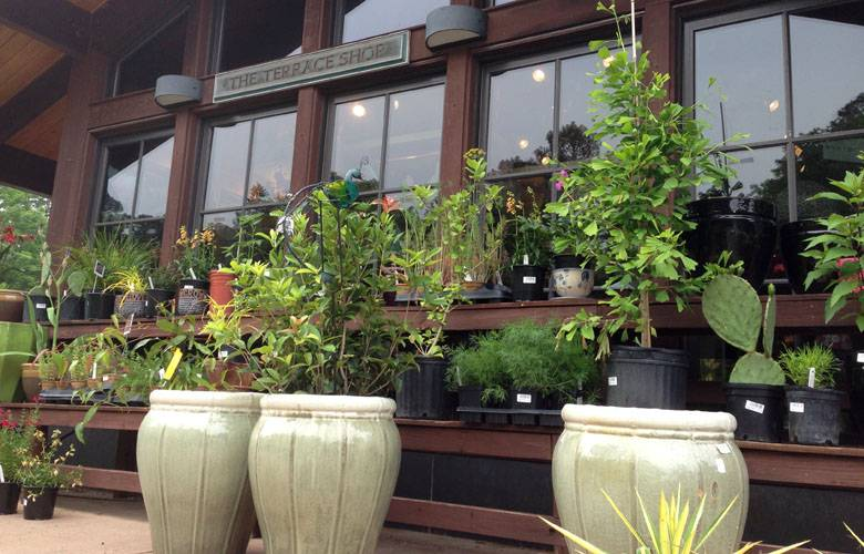 Terrace shop duke gardens for Terrace garden plants