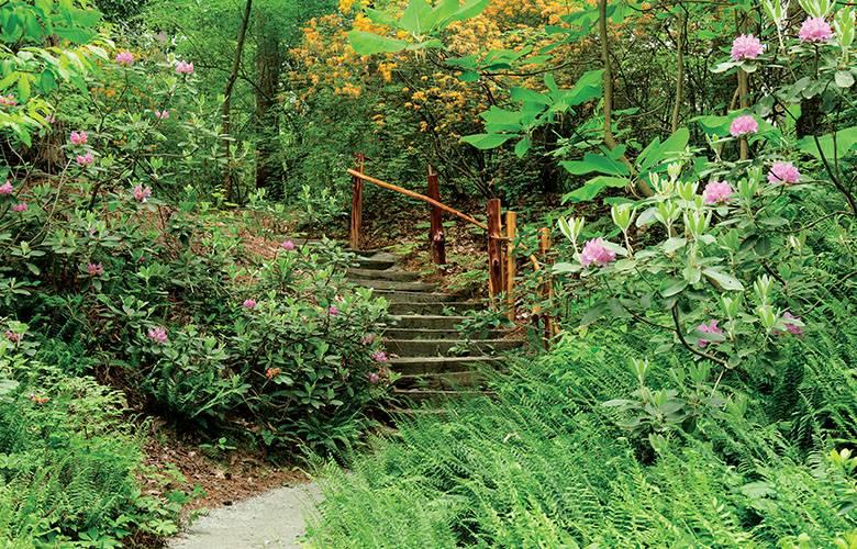 Blomquist garden duke gardens for Flowers landscape gardening