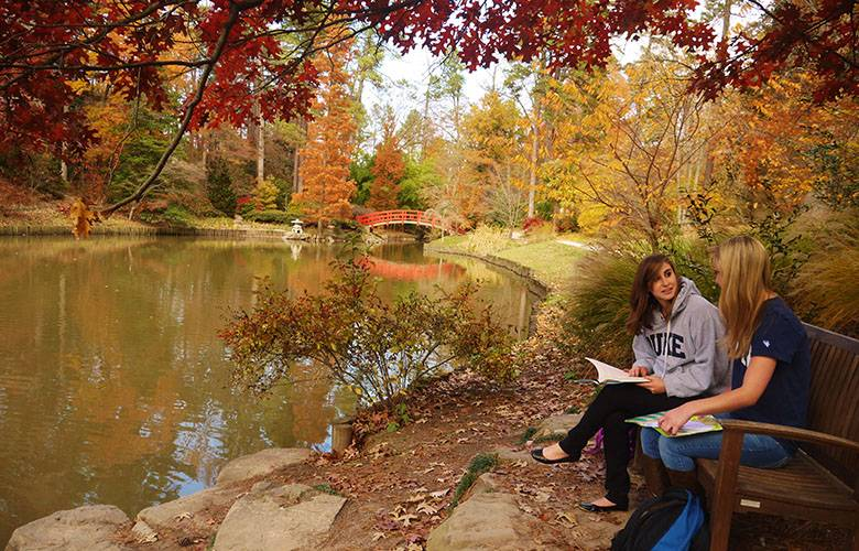 Students enjoy the Culberson Asiatic Arboretum in fall