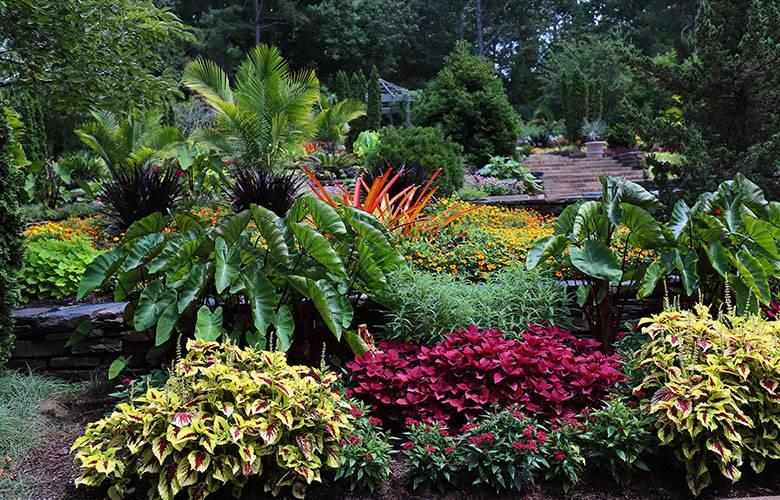 Duke Gardens | Learning, inspiration and enjoyment