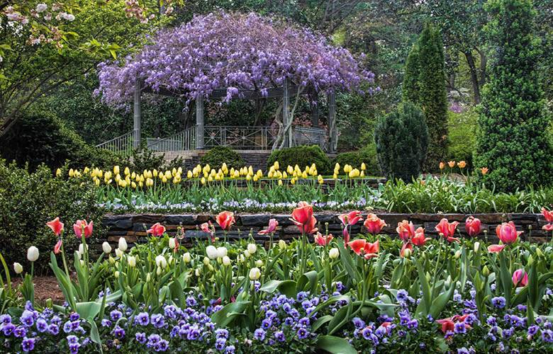 Pergola Restoration Project Duke Gardens