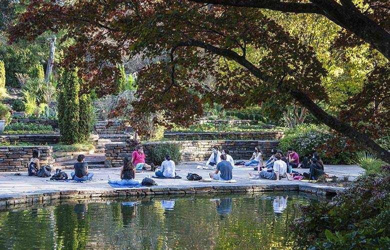 view of the Terrace Gardens with a group of students seated on the lower terrace and a fish pool in the foreground