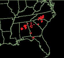 Steve Church Endangered Species Garden Duke Gardens - Us map aster